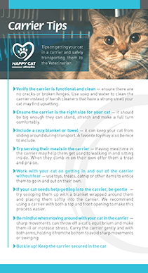 Carrier Tips for Cats