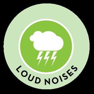 Loud noises