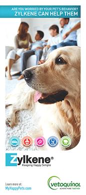 Zylkene Product Brochure